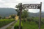 Отель Agriturismo Molinaro