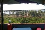 Мини-отель Prakash Friends Club