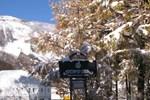 Отель Grindelwald