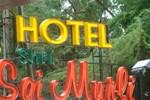 Отель Hotel Shri Sai Murli