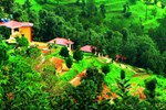 Отель Himalaya Darshan Resort