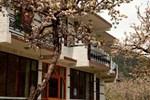 Отель The Manali Lodge