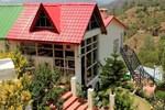 Отель Maple Resort