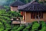 Отель Lee Wine Ruk Thai Resort