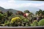 Вилла Villa Buena Vista