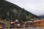 Отель Uzungol Motel