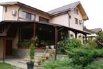Гостевой дом Pensiunea Bujorul