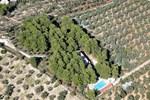 Apartment Vieste Province of Foggia 2