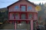 Гостевой дом Pensiunea Floare de Bucovina