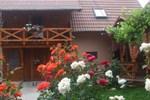 Гостевой дом Pensiunea Hanzu