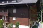Апартаменты Apartment Ollon 4