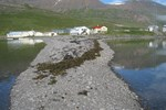 Мини-отель Swanfjord Guesthouse