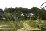 Villa Salmenta Province of Lecce