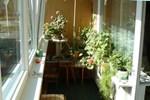 Brīvības Street Apartment in Ventspils