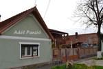 Гостевой дом Pensiunea Adela