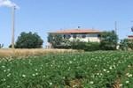 Agriturismo Le Pinete
