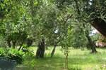 Piccola Casetta - Isola di Dino