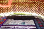 Гостиница Yurt Camp