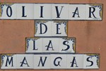 Отель Hotel Rural Olivar de las Mangas