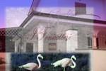 Мини-отель B&B I Fenicotteri