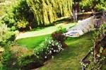 Paradiso Verde