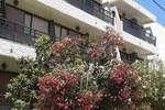 Отель Paradise Hotel