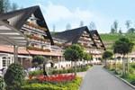 Отель Hotel Dollenberg