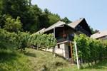 Апартаменты Vineyard Cottage Zajc