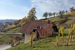 Апартаменты Vineyard Cottage Krivic