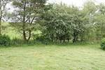 Inny Vale