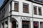 Отель Hotel Kaunic