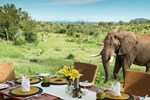 Отель Royal Madikwe Luxury Safari Lodge