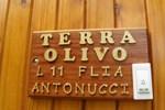 Отель Cabañas Terra Olivo