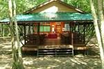 Отель Nature Lodge Kinabatangan