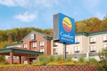 Отель Comfort Inn & Suites Rogersville