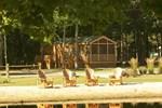 Отель Lakeside Cabins Resort