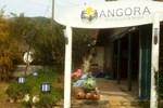 Мини-отель Angora Resort