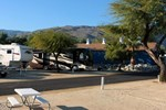 Palm Canyon RV Resort