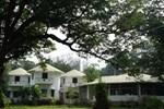 Отель Raya Resort