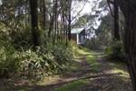 Апартаменты Secluded Rainforest Retreat