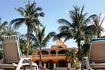 Отель Hotel Gran Palmeiras