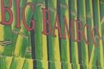 Отель Big Bamboo de Uvita