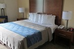 Comfort Inn Apalachin