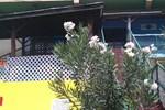 Гостевой дом La Vista Guest Inn