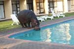 Отель Elephant Lake Hotel