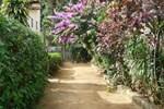 Mango Tree Hostel Ilha Grande