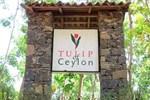 Отель Hotel Tulip Of Ceylon