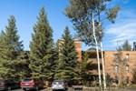 Апартаменты Ten Mile Island 213C by Colorado Rocky Mountain Resorts