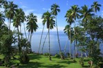 Отель Playa Cativo Lodge