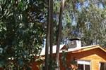Апартаменты Casa del Bosque